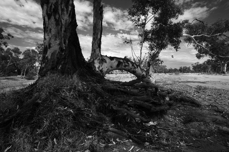 australia_2015_05