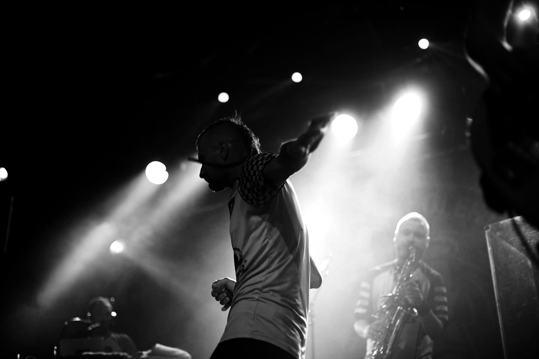 _MG_2248vedranpilipovic_concerts2